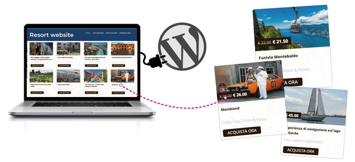 Holli-Web WordPress Plug-in