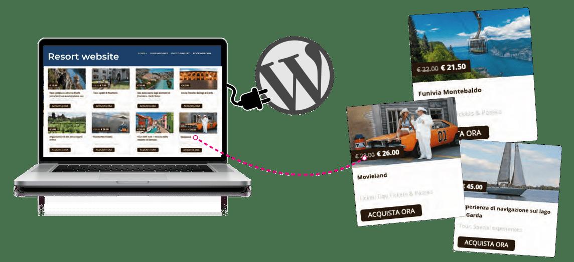 Holli-Web WordPress Plug-in